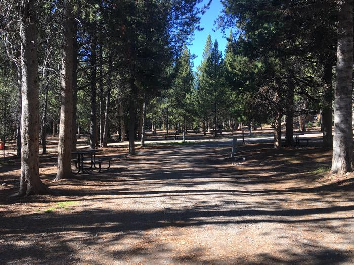 A photo of Site 19 of Loop A at Colter Bay RV Park with Full Hookup