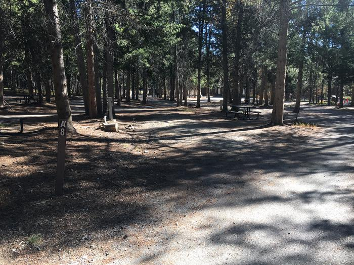 A photo of Site 8 of Loop A at Colter Bay RV Park with Full Hookup