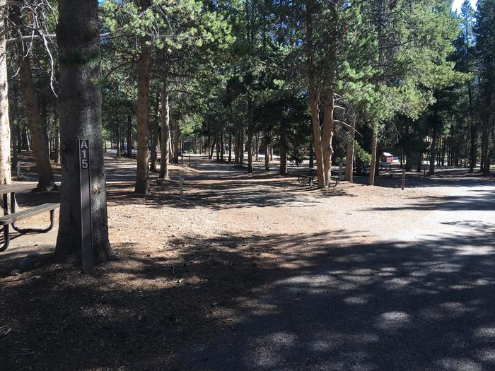 A photo of Site 15 of Loop A at Colter Bay RV Park with Full Hookup