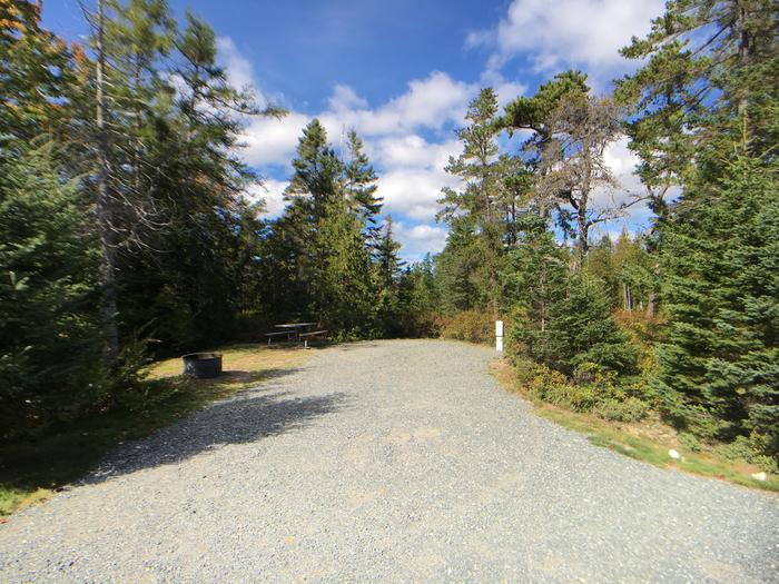 A photo of Site A05 from The RoadA photo of Site A05 of Loop A-Loop at Schoodic Woods Campground with Picnic Table, Electricity Hookup, Fire Pit