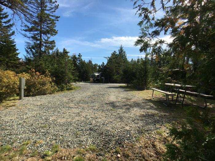 A photo of Site A05 of Loop A-Loop at Schoodic Woods Campground with Picnic Table, Electricity Hookup, Fire Pit