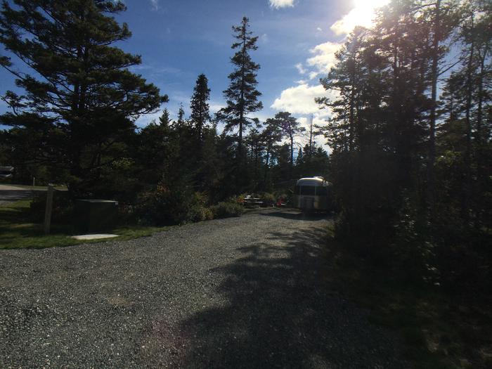 A photo of Site A12 While OccupiedA photo of Site A12 of Loop A-Loop at Schoodic Woods Campground with Picnic Table, Electricity Hookup, Fire Pit