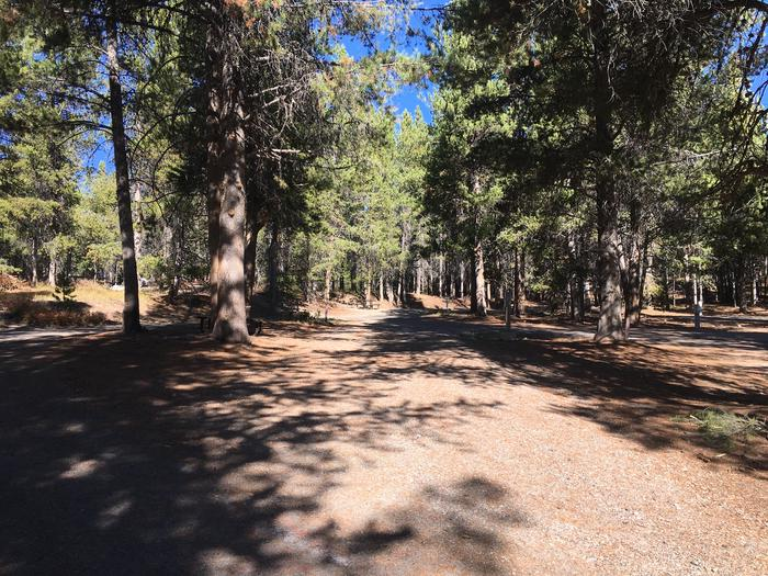 A photo of Site 13 of Loop A at Colter Bay RV Park with Full Hookup
