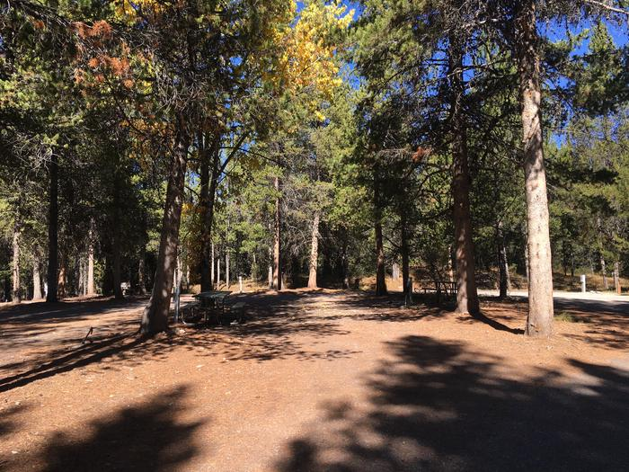 A photo of Site 31 of Loop C at Colter Bay RV Park with Full Hookup
