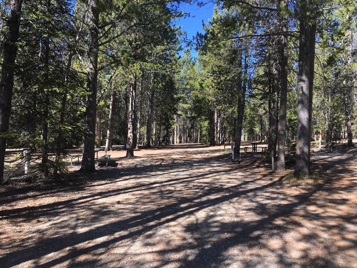 A photo of Site 39 of Loop C at Colter Bay RV Park with Full Hookup