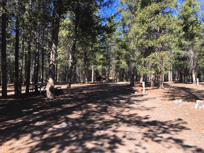 A photo of Site 45 of Loop D at Colter Bay RV Park with Full Hookup