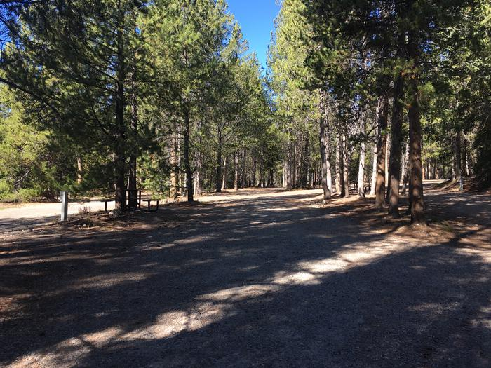 A photo of Site 29 of Loop B at Colter Bay RV Park with Full Hookup