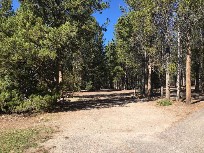 A photo of Site 40 of Loop C at Colter Bay RV Park with Full Hookup