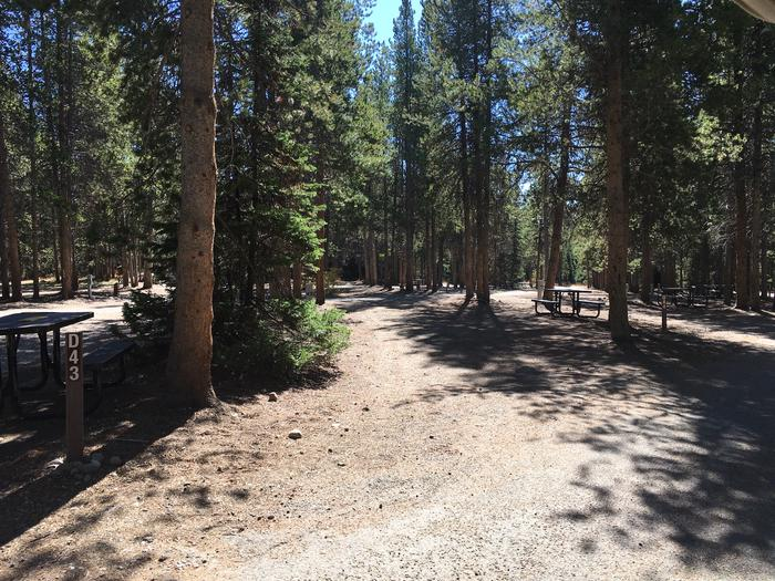 A photo of Site 43 of Loop D at Colter Bay RV Park with Full Hookup