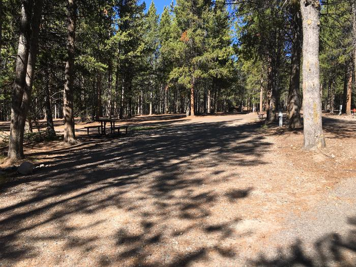 A photo of Site 37 of Loop C at Colter Bay RV Park with Full Hookup