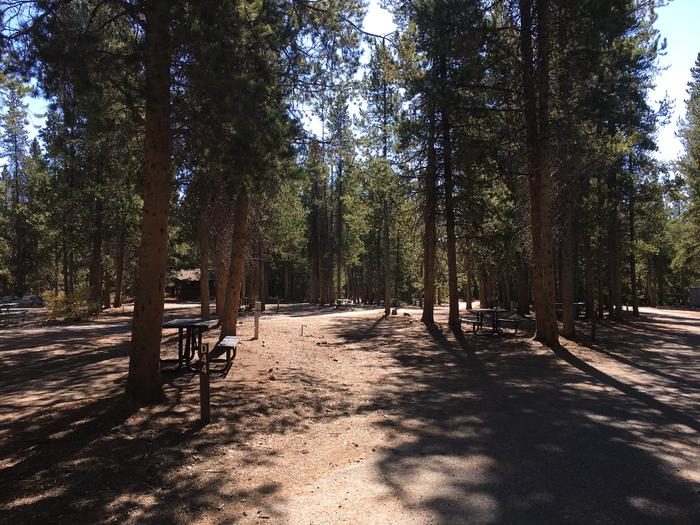 A photo of Site 44 of Loop D at Colter Bay RV Park with Full Hookup