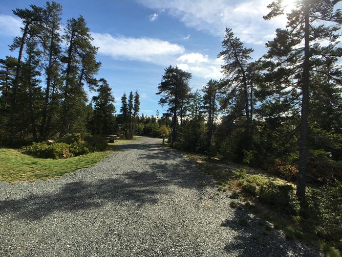 A photo of Site B18 as Viewed From The Pull-Out SideA photo of Site B18 of Loop B-Loop at Schoodic Woods Campground with Picnic Table, Electricity Hookup, Fire Pit, Water Hookup