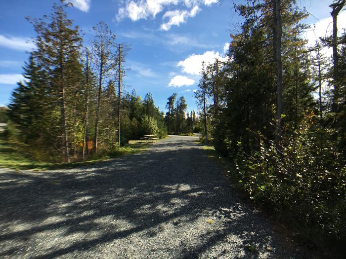 A photo of Site B11 as Viewed From The Pull-Out SideA photo of Site B11 of Loop B-Loop at Schoodic Woods Campground with Water Hookup