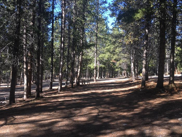 A photo of Site 61 of Loop G at Colter Bay RV Park with Full Hookup