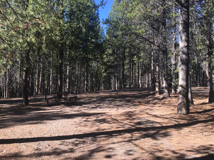 A photo of Site 53 of Loop E at Colter Bay RV Park with Full Hookup