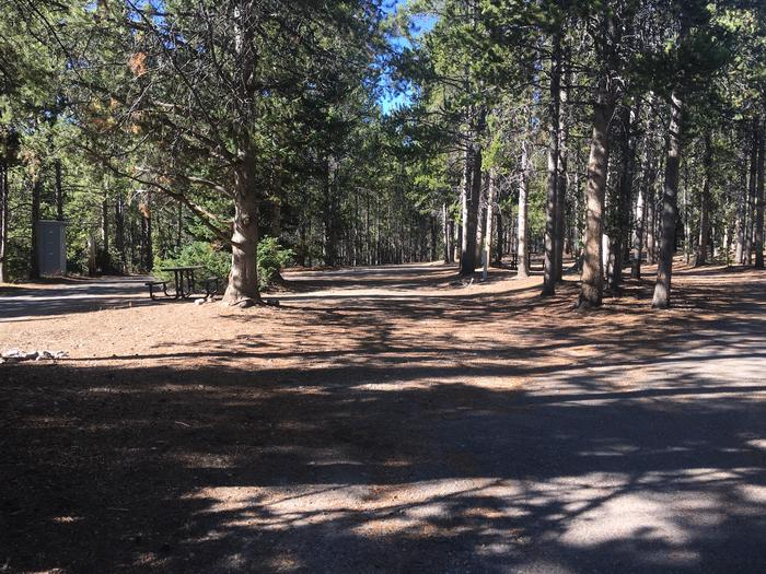 A photo of Site 49 of Loop D at Colter Bay RV Park with Full Hookup