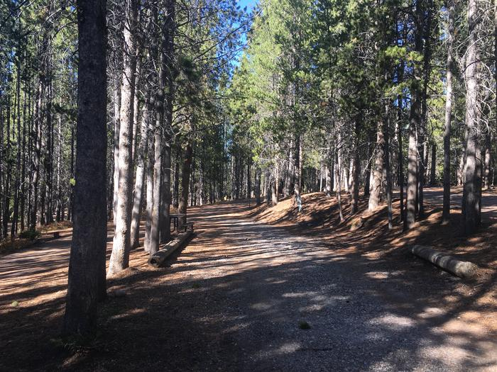 A photo of Site 58 of Loop F at Colter Bay RV Park with Full Hookup