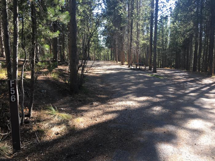 A photo of Site 56 of Loop F at Colter Bay RV Park with Full Hookup