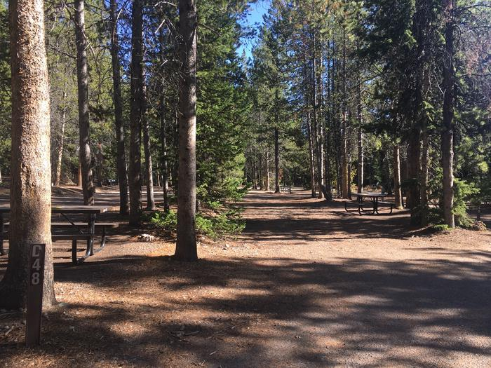 A photo of Site 48 of Loop D at Colter Bay RV Park with Full Hookup