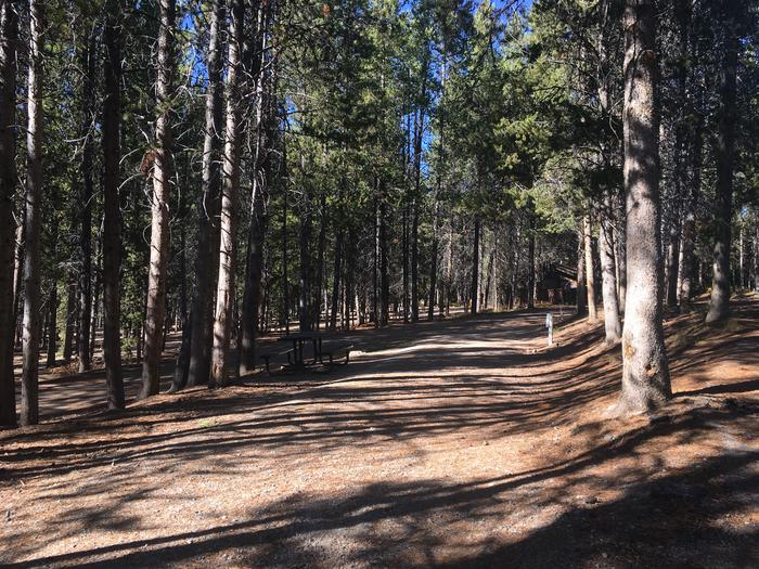 A photo of Site 57 of Loop F at Colter Bay RV Park with Full Hookup