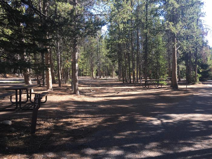 A photo of Site 47 of Loop D at Colter Bay RV Park with Full Hookup