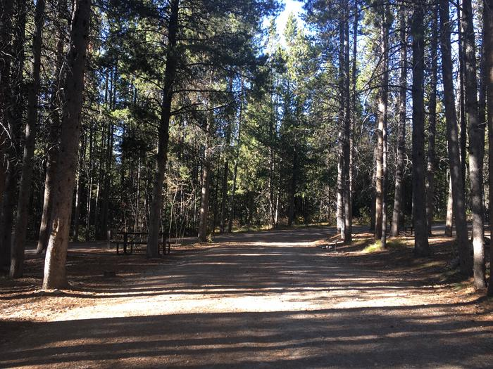 A photo of Site 111 of Loop P at Colter Bay RV Park with Full Hookup