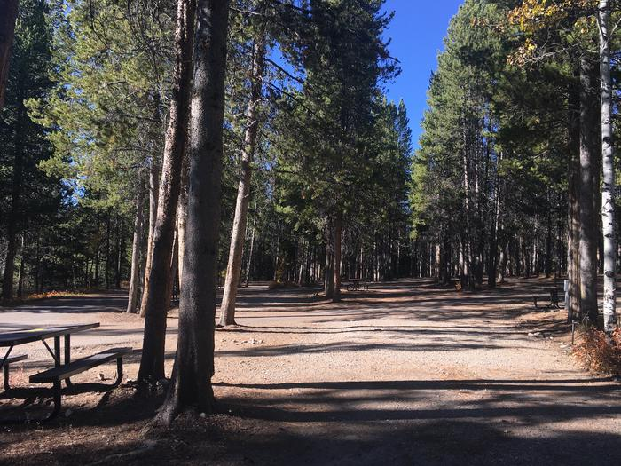 A photo of Site 95 of Loop L at Colter Bay RV Park with Full Hookup