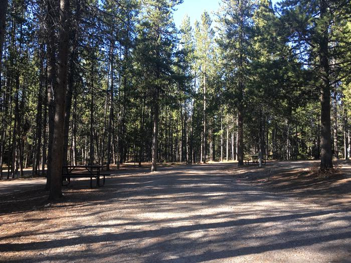 A photo of Site 99 of Loop N at Colter Bay RV Park with Full Hookup
