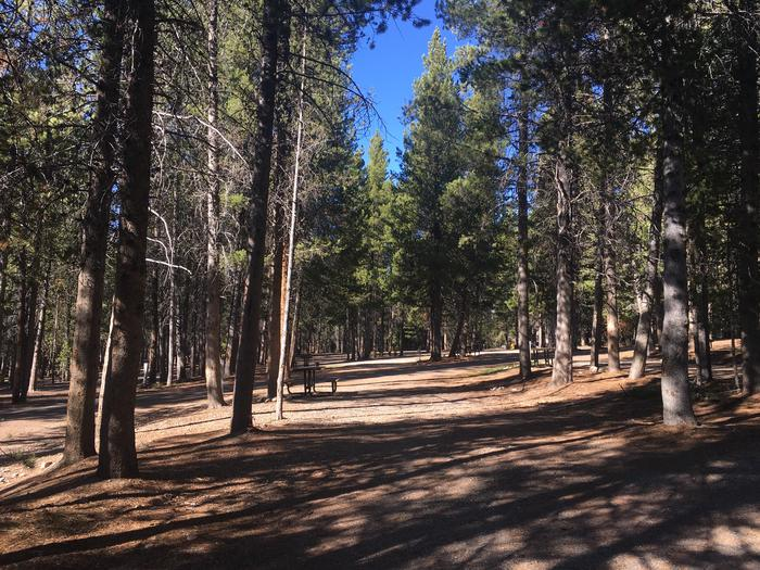 A photo of Site 72 of Loop I at Colter Bay RV Park with Full Hookup