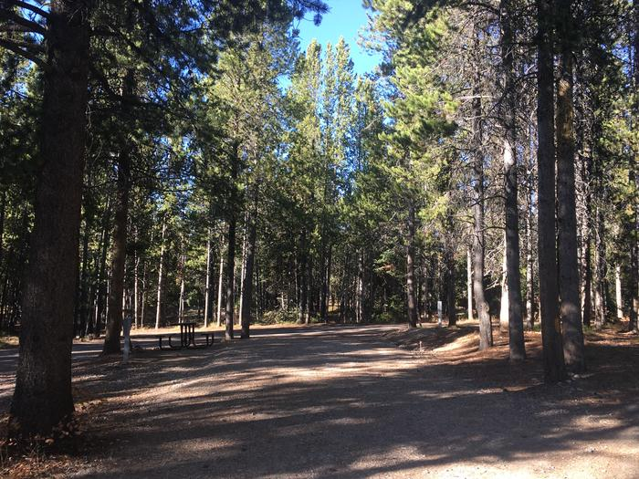 A photo of Site 98 of Loop N at Colter Bay RV Park with Full Hookup