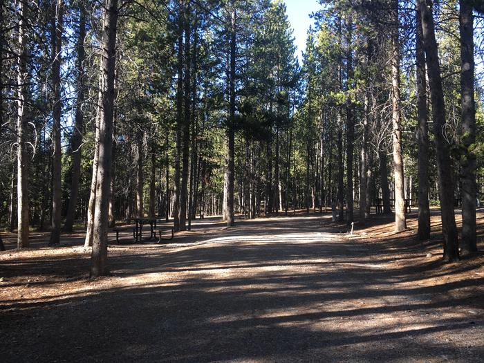 A photo of Site 100 of Loop N at Colter Bay RV Park with Full Hookup
