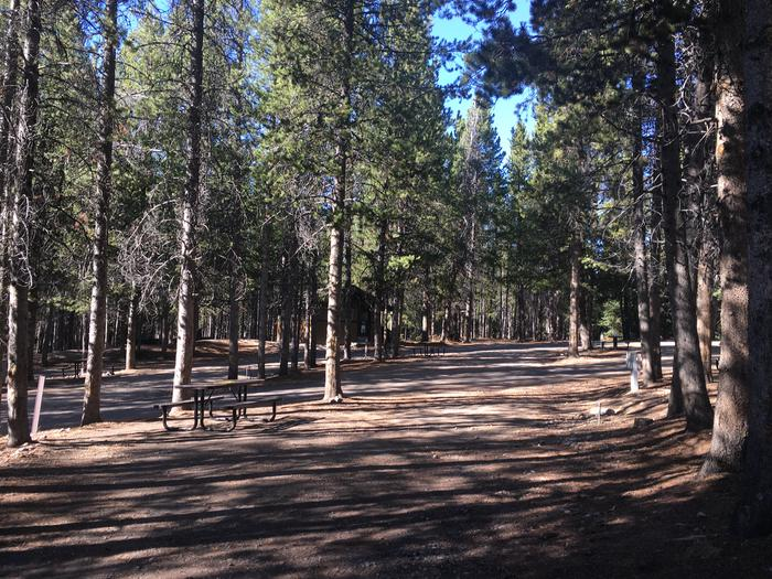 A photo of Site 83 of Loop K at Colter Bay RV Park with Full Hookup