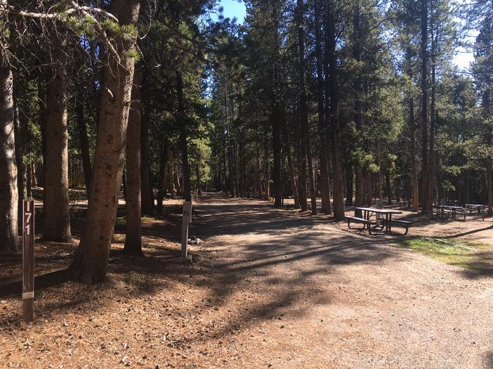 A photo of Site 71 of Loop I at Colter Bay RV Park with Full Hookup