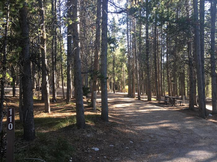 A photo of Site 110 of Loop P at Colter Bay RV Park with Full Hookup