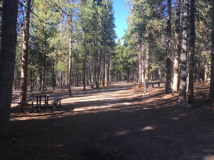 A photo of Site 68 of Loop H at Colter Bay RV Park with Full Hookup