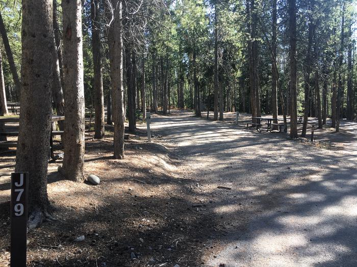 A photo of Site 79 of Loop J at Colter Bay RV Park with Full Hookup