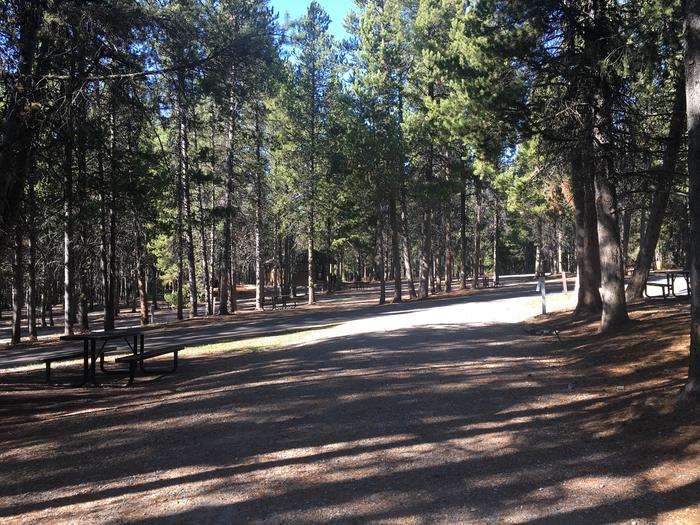 A photo of Site 77 of Loop J at Colter Bay RV Park with Full Hookup