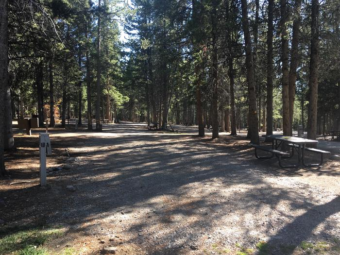 A photo of Site 81 of Loop K at Colter Bay RV Park with Full Hookup