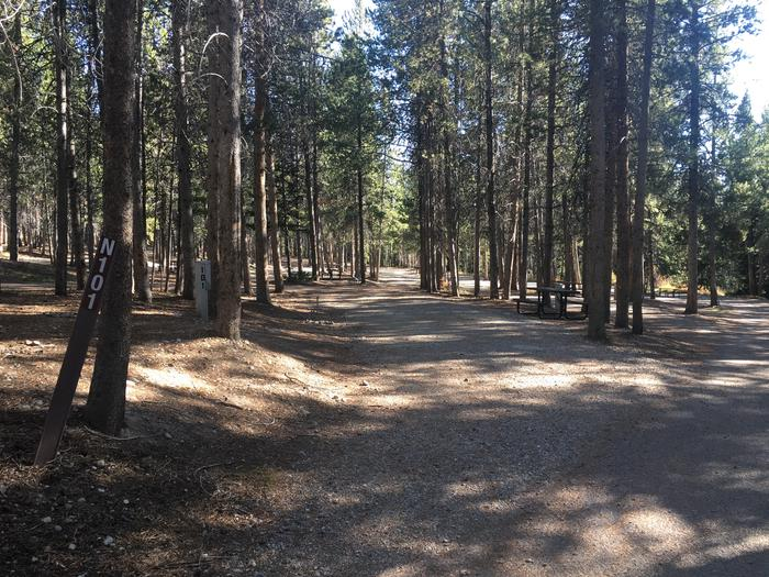 A photo of Site 101 of Loop N at Colter Bay RV Park with Full Hookup