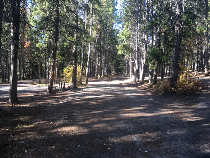 A photo of Site 109 of Loop O at Colter Bay RV Park with Full Hookup