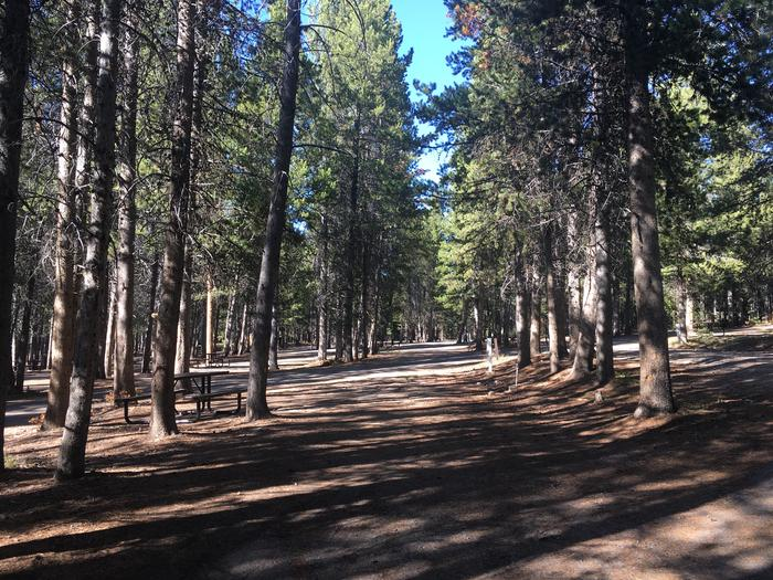 A photo of Site 67 of Loop H at Colter Bay RV Park with Full Hookup