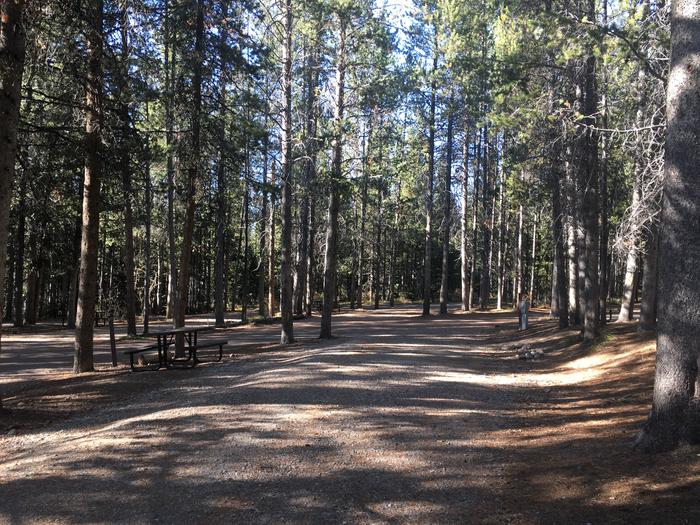A photo of Site 107 of Loop O at Colter Bay RV Park with Full Hookup