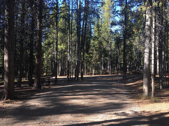A photo of Site 105 of Loop O at Colter Bay RV Park with Full Hookup