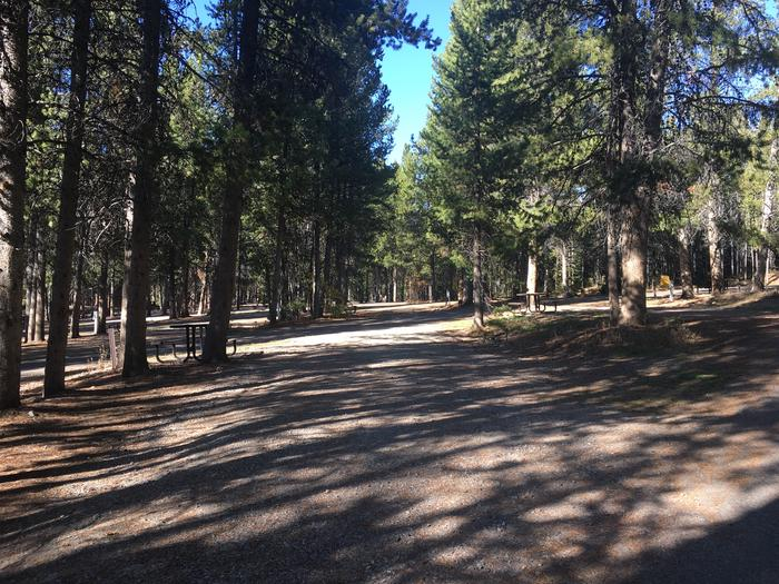 A photo of Site 66 of Loop H at Colter Bay RV Park with Full Hookup