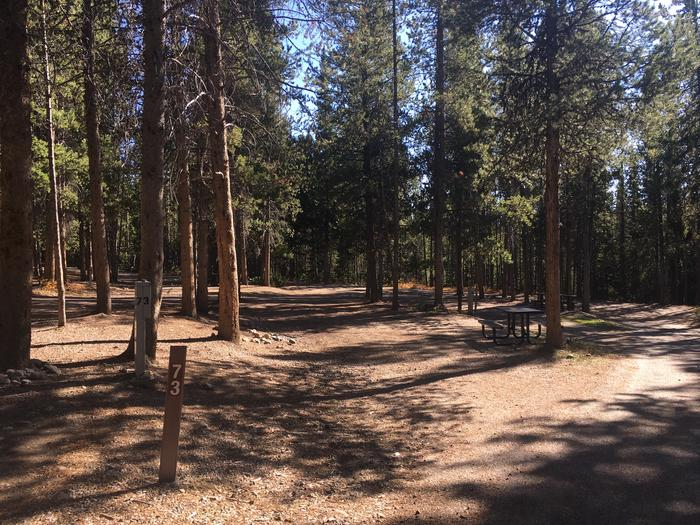 A photo of Site 73 of Loop I at Colter Bay RV Park with Full Hookup