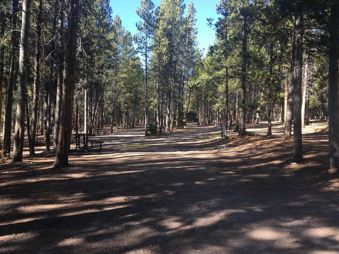 A photo of Site 74 of Loop I at Colter Bay RV Park with Full Hookup