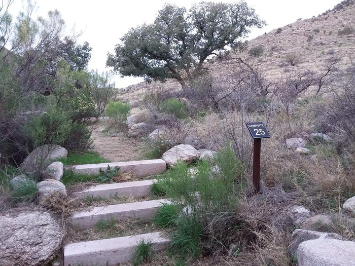 Path to site 25