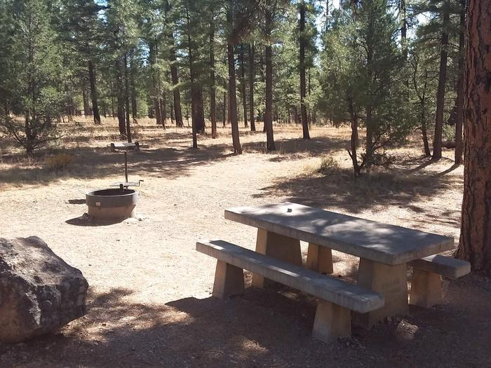 Moenkopi Loop Site 12 partially shaded with a picnic table, grill and fire pit