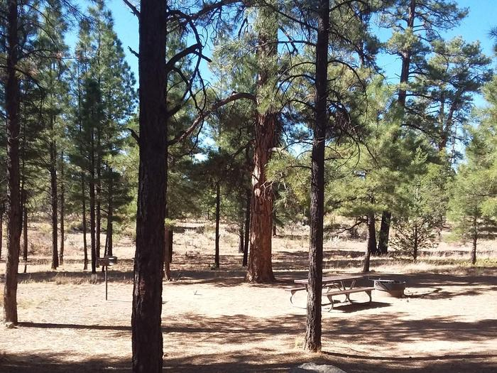 Moenkopi Loop Site 22 partially shaded with a picnic table, grill and fire pit