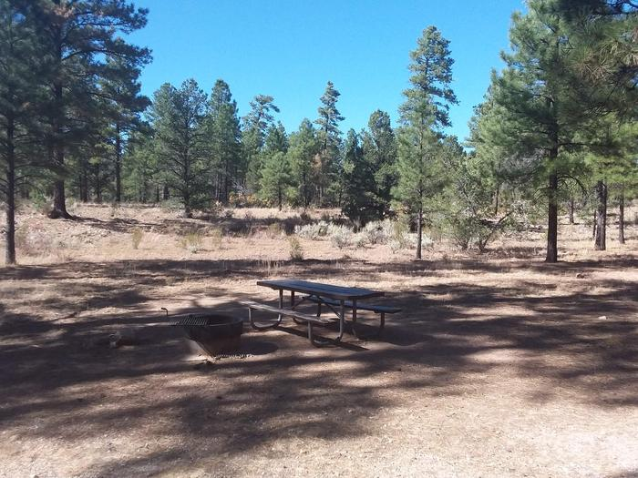 Moenkopi Loop Site 24 partially shaded with a picnic table, grill and fire pit